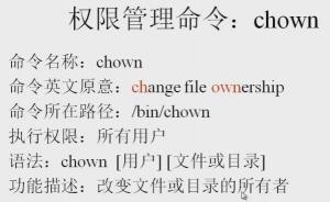 改变文件的所有者和所属群组命令:chown